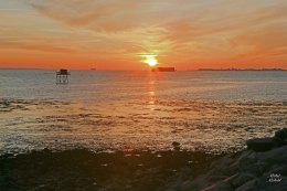 IMG_2172 R S