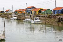 IMG_2282 R S