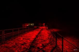 40Le pont la nuit