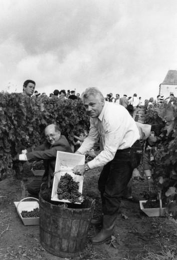 Ban des vendanges à St Astier 1994 (4)