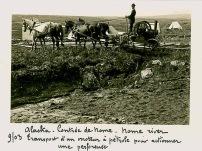 9 Chercheurs d'or en alaska 1903