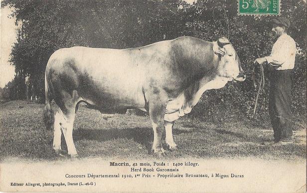 Concours départemental 1910 1er prix Brunateau à Miguon.